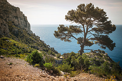 Calanque - p1007m1020677 by Tilby Vattard