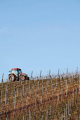Traktor im Weinberg - p5500124 von Thomas Franz