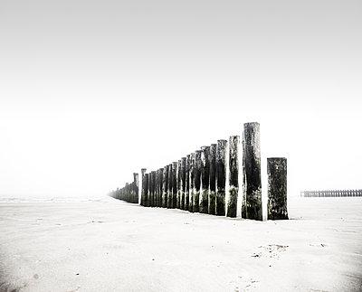Viele Holzpfähle stehen bei nebligem Wetter dicht hintereinander m Strand von Wangerooge - p1162m2115388 von Ralf Wilken