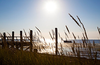 Sunshine in Northern Germany - p4880369 by Bias