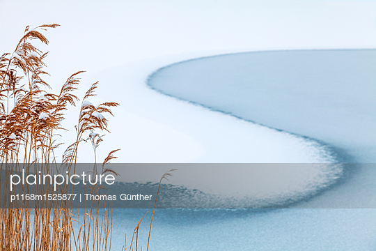 Lakeshore covered with snow - p1168m1525877 by Thomas Günther