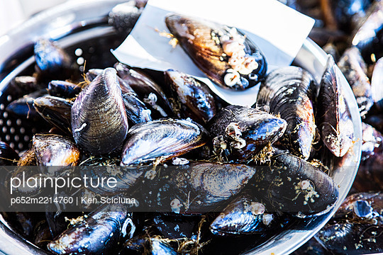 Spain. Galicia. Padron. On the route of the Camino Portuges from Porto to Santiago de Compostela mussels on dispaly at the market. - p652m2214760 by Ken Scicluna