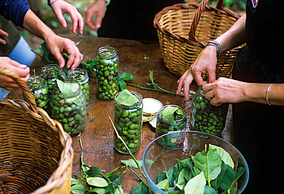 Pickling olives - p885m890728 by Oliver Brenneisen