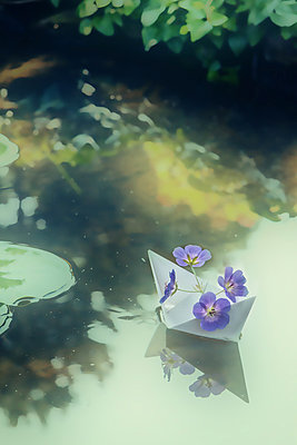 Four Blossoms in a Paper Boat - p739m816698 by Baertels