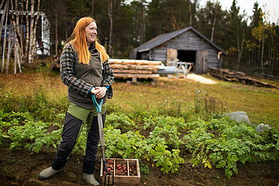 Woman digging potatoes - p312m2080667 by Fredrik Ludvigsson