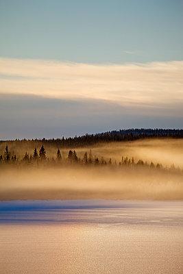 Nebelschwaden über eisbedecktem Waldsee - p235m1116464 von KuS