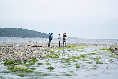 Father and sons taking photographs on beach, Pacific Rim National Park, Vancouver Island, Canada - p924m1422746 by Raphye Alexius
