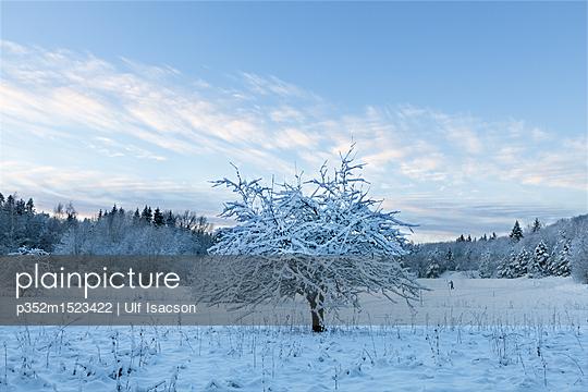 p352m1523422 von Ulf Isacson