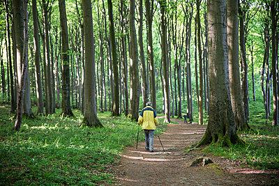 Germany, Mecklenburg-Western Pomerania, Ruegen, Jasmund National Park, hiker in beech forest on hiking trail - p300m2059322 von Maria Maar