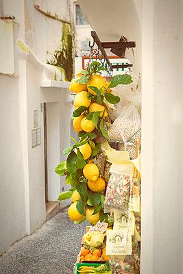 Lemons - p294m944496 by Paolo