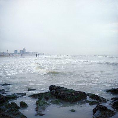 Stormy sea - p387m900846 by Patricia Eichert