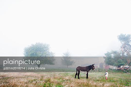 p301m2018214 von Julia Christe