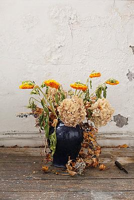 Vertrocknete Blumen in einer Vase - p1270m1106160 von Camille Malissen