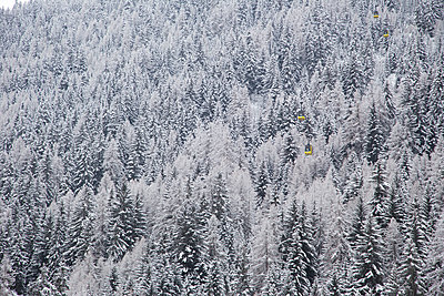 Snow on trees in La Thulie, Italy - p352m1536517 by Andreas Ulvdell