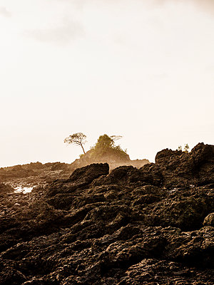 Rocky coast at sunset - p1177m2111162 by Philip Frowein