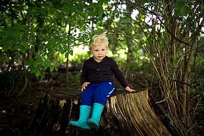 p1386m1476388 by Lindqvist