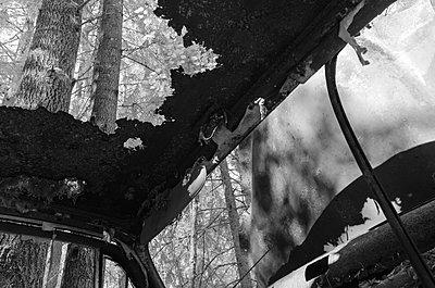 Autofriedhof - p1463m2192644 von Wolfgang Simlinger