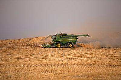 Mähdrescher auf einem Weizenfeld - p552m1462170 von Leander Hopf