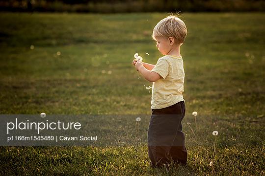 p1166m1545489 von Cavan Social