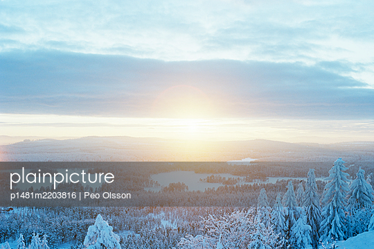 View over snow covered woods at sunrise, Sweden - p1481m2203816 by Peo Olsson