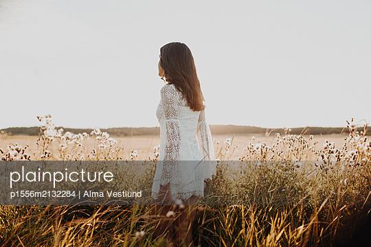 p1556m2132284 by Alma Vestlund
