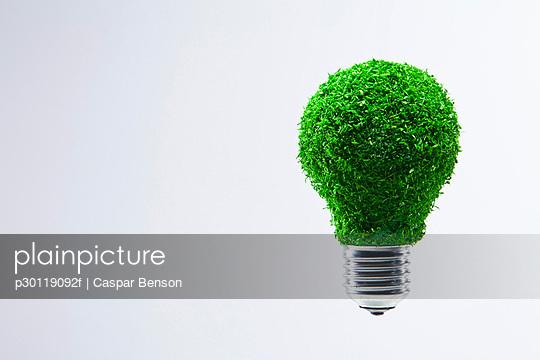 p30119092f von Caspar Benson