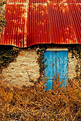 Blaue Tür in Wellblechhütte - p248m859152 von BY