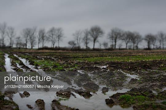Frosty field - p1132m2168057 by Mischa Keijser