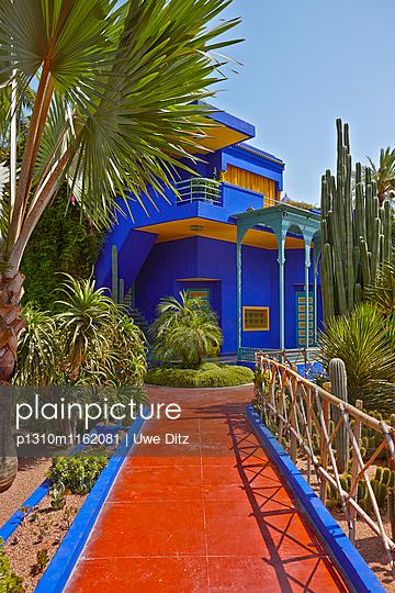 Jardin Majorelle - p1310m1162081 von Uwe Ditz