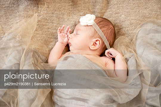 A four week old baby nestled in blankets asleep.  - p429m2190381 by Senserini Lucrezia
