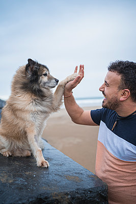 Laughing man giving high five to dog at beach against sky - p300m2256626 by SERGIO NIEVAS