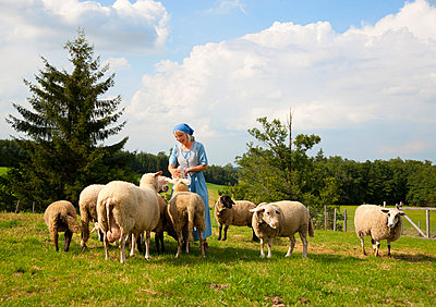 Germany, Bavaria, Mature woman caressing sheep on farm - p300m752374f by hsimages