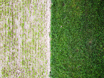 Field from above - p930m2298009 by Ignatio Bravo