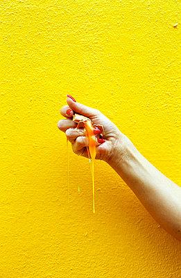 Egg yolk - p0450228 by Jasmin Sander
