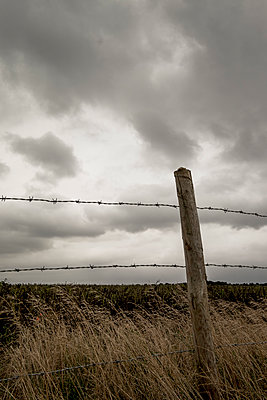 Barbed wire fence - p1228m1464986 by Benjamin Harte