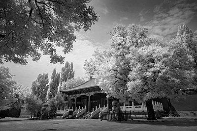 Sommerpalast - p1653m2232300 von Vladimir Proshin