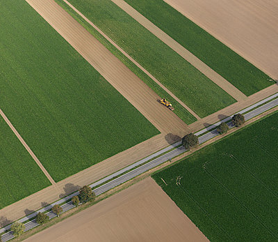 Aerial view combine harvester in agricultural crop, Hohenheim, Baden-Wuerttemberg, Germany - p301m2017504 by Stephan Zirwes