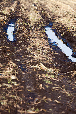 Furrows with water - p7390327 by Baertels