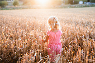 Girl on wheat field - p312m2139647 by Anna Johnsson