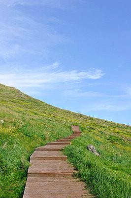 Holzweg am Berg - p949m658732 von Frauke Schumann