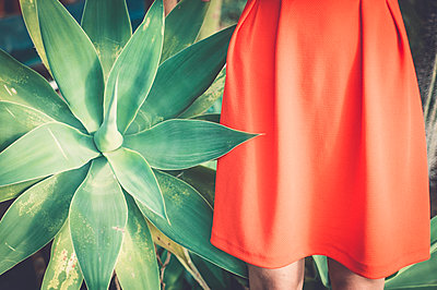 Red dress and green agave - p1150m1112928 by Elise Ortiou Campion