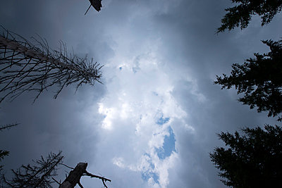 Clouds - p427m859413 by R. Mohr