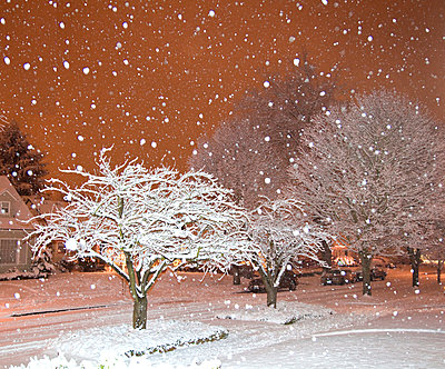 Falling Snow in a Neighborhood - p555m1452989 by Spaces Images