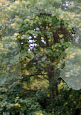 Pané - p627m1035956 by Hendrik Rauch