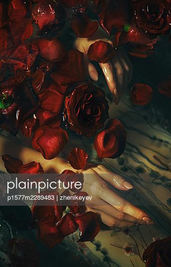 Undine - p1577m2289483 by zhenikeyev
