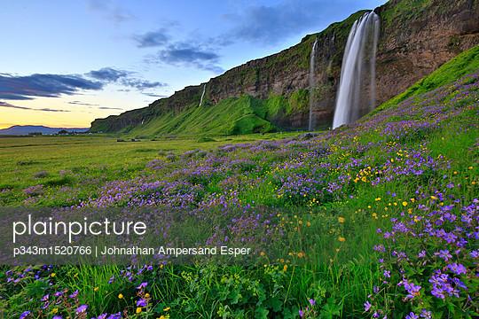 Seljalandsfoss waterfall at dawn, Iceland - p343m1520766 by Johnathan Ampersand Esper