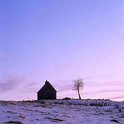 Countryside - p813m778807 by B.Jaubert