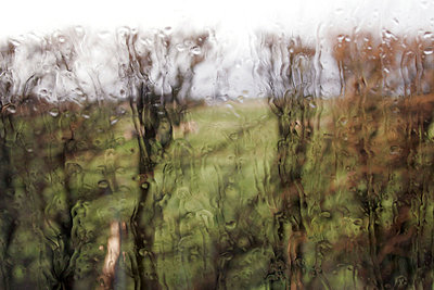 Regenscheibe - p1650285d von Andrea Schoenrock