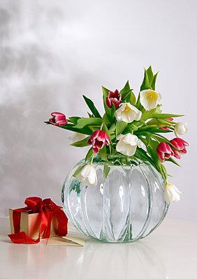 Geburtstag - p2686943 von Clara Ritz