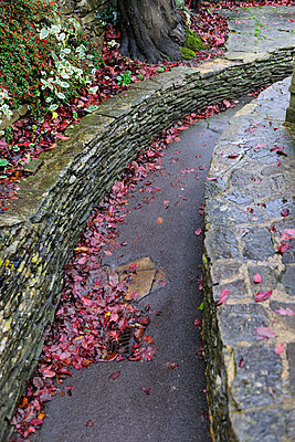 Path between stone walls - p1048m989436 by Mark Wagner